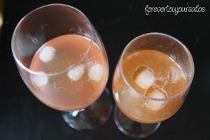 lemonade-aloe-martini_trials